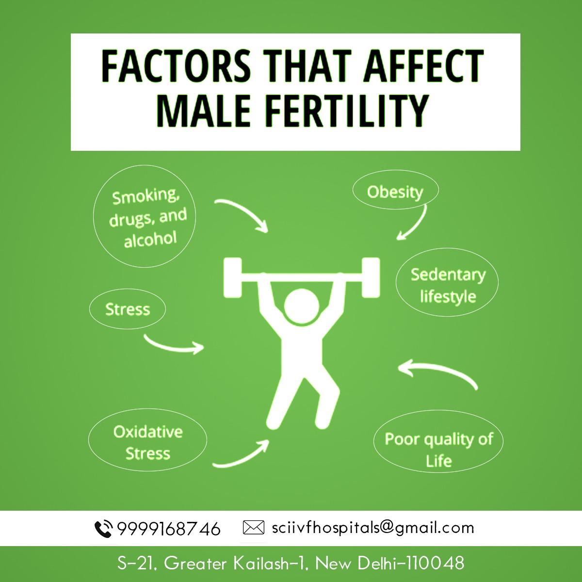 Factors that Influence Male Fertility